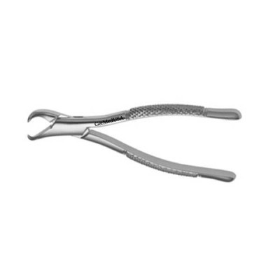 American Forceps, Lower Molars, Cowhorn, no.23