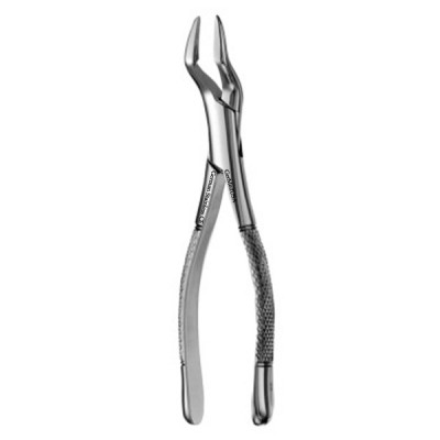 American Forceps, Strong Beak, no.32